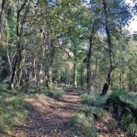 callander-crags-path