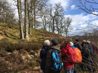 leny-woods-community-archaeology-project-woodland-walk-march-2019