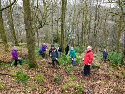 woodland-management-activities-with-forth-valley-recovery-community-march-2019