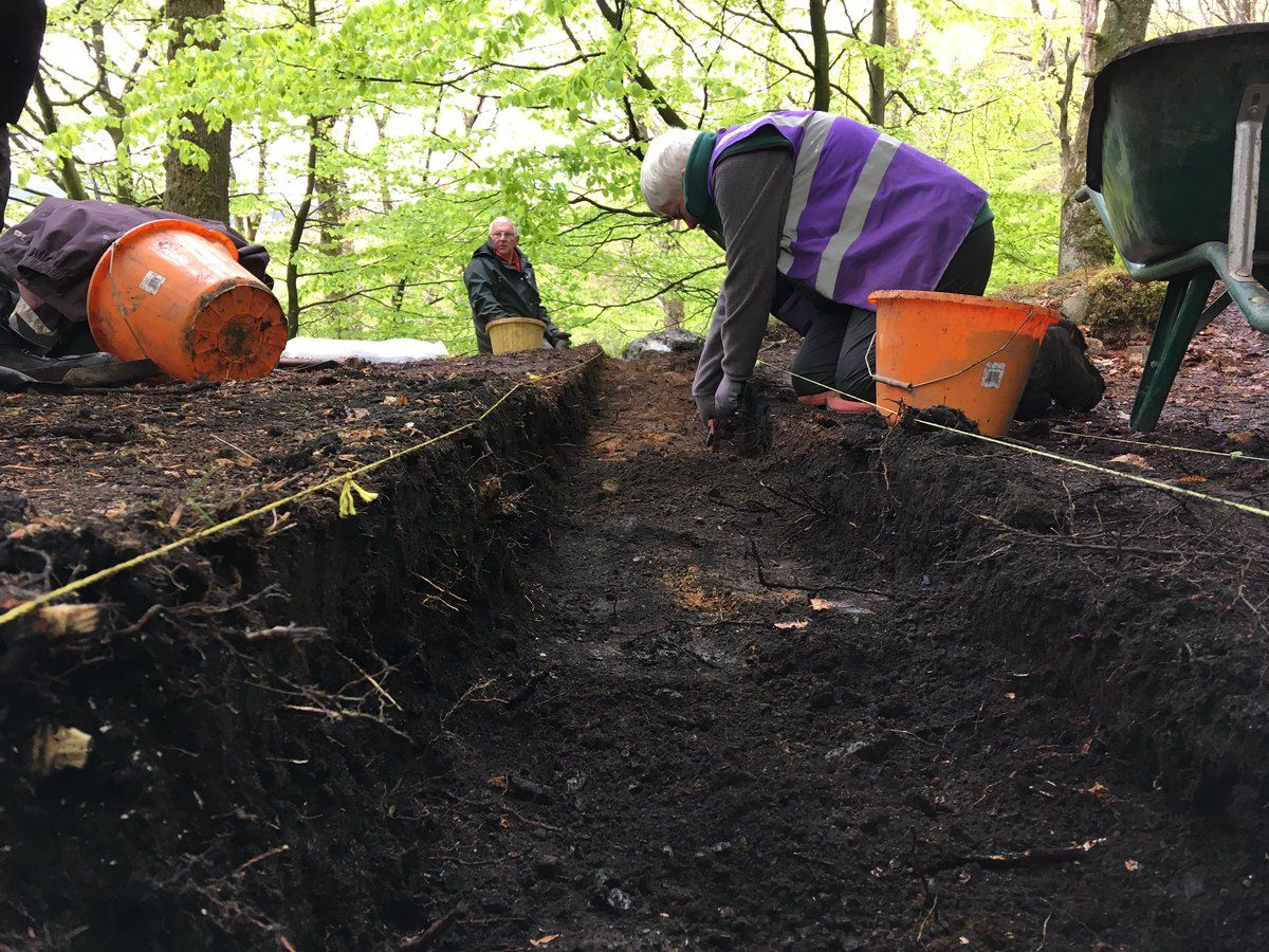 inside-excavated-trench-in-leny-woods