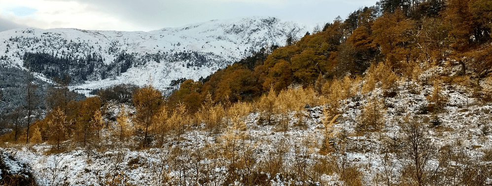 Leny-woods-looking-over-at-a-snowy-Ben-Ledi