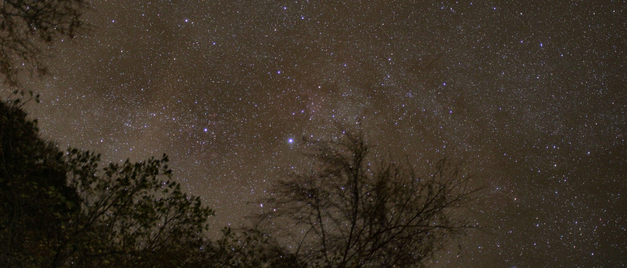 starry-night-above-the-trees-from-loch-venacher