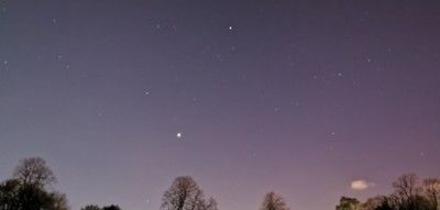 venus-in-the-sky-above-the-trees