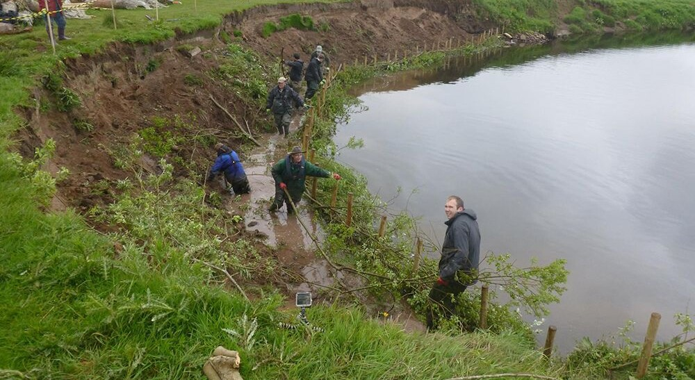 Brash bank in progress at Allan Water
