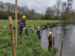 three-men-two-in-the-river-one-on -the-bank-putting-in-posts